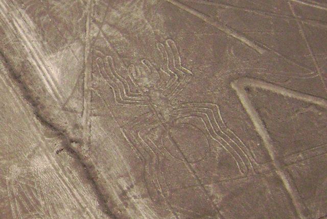 Nazca Linien Spinne