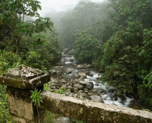 Tourismus im Manu National Park