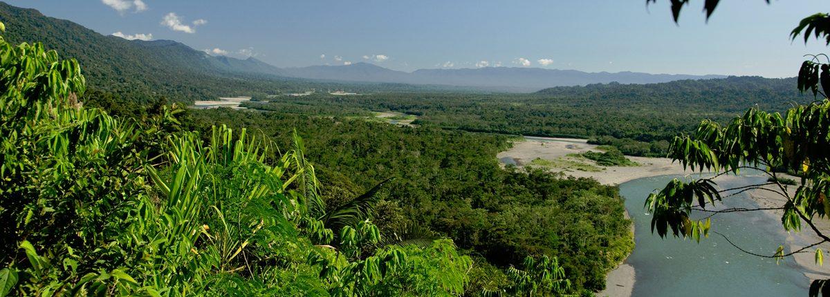 Manu National Park: Stunning biodiversity