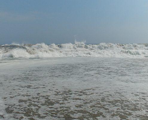 Wellen Punta Rocas