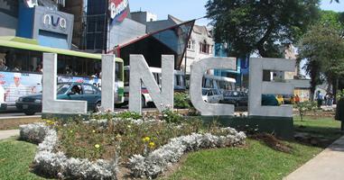 Lince in Lima Peru